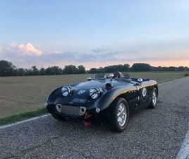 AUSTIN HEALEY FROG EYE RACE