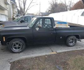 FOR SALE: 1976 CHEVROLET C10 IN CADILLAC, MICHIGAN