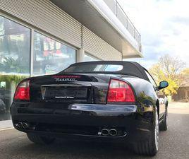 SPYDER GT