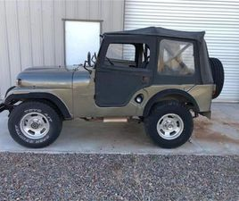FOR SALE: 1959 JEEP WILLYS IN CADILLAC, MICHIGAN