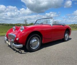 USED 1959 AUSTIN HEALEY SPRITE - CONVERTIBLE 24,144 MILES IN RED FOR SALE   CARSITE