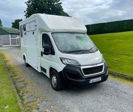 2018 PEUGEOT BOXER HORSE VAN - HORSE BOX FOR SALE IN LOUTH FOR €30,000 ON DONEDEAL