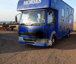 DAF HORSE BOX