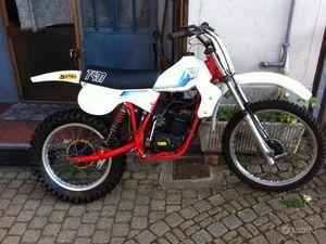TGM 50 CR 81