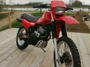 ORGINELE HONDA XL 600 R 1983 (MOET WEG)
