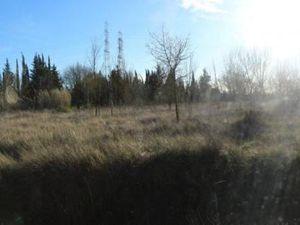 Terrain à vendre Cournonterral COURNONTERRAL Herault (34660)