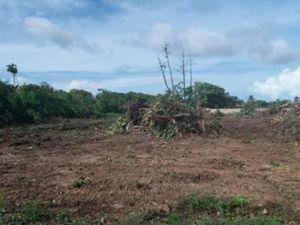 Terrain à vendre Matoury Guyane (97351)