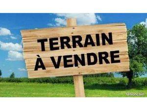 Vente terrain 1000m2 Crottes-en-Pithiverais 45170 - 34720 € - Surface Privée