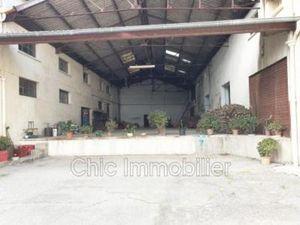 Commerce à vendre Elne 600 m2 Pyrenees orientales (66200)