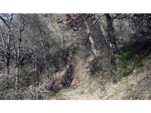 Vente terrain 2800m2 L;Escarène 06440 - 86400 € - Surface Privée