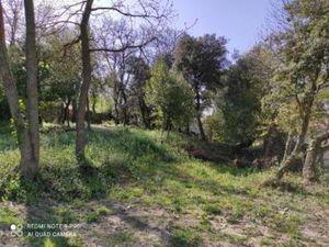 Terrain à vendre Bollene 1184 m2 Vaucluse (84500)