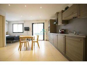 Location appartement 1 pièce meublé (cuisine équipée  balcon  rangement) Saint Laurent du