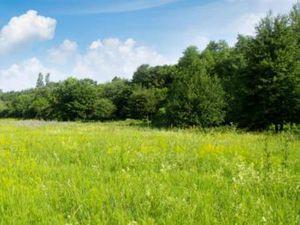 Terrain à vendre Pugnac 720 m2 Gironde (33710)