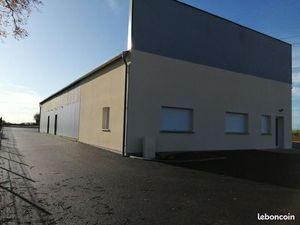 Local d'activité 250 m²