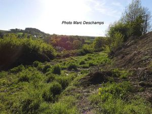 Vente terrain Bourganeuf