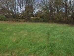 A vendre Terrain agricole 67400 m² à DENAT | CAPIFRANCE