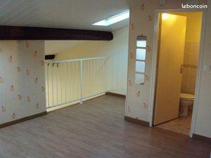 Appartement duplex 4 pieces 110 m²