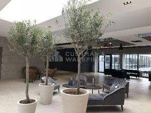 BUREAUX 690 m² (Div. 101 m² à louer(ILLKIRCH GRAFFENSTADEN 67400
