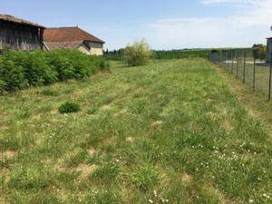 Terrain à vendre Reole 1000 m2 Gironde (33190)