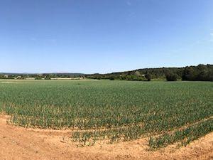 Vente Terrain agricole 56800 m² AIX-EN-PROVENCE (13290)