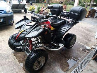 quad adly 300