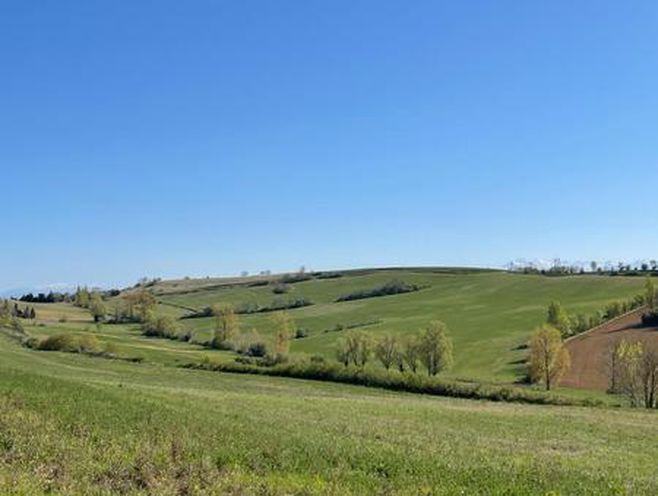 terrain 5000 m²